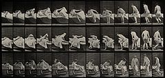 A woman getting out of a bed. Collotype after Eadweard Wellcome V0048662EB.jpg