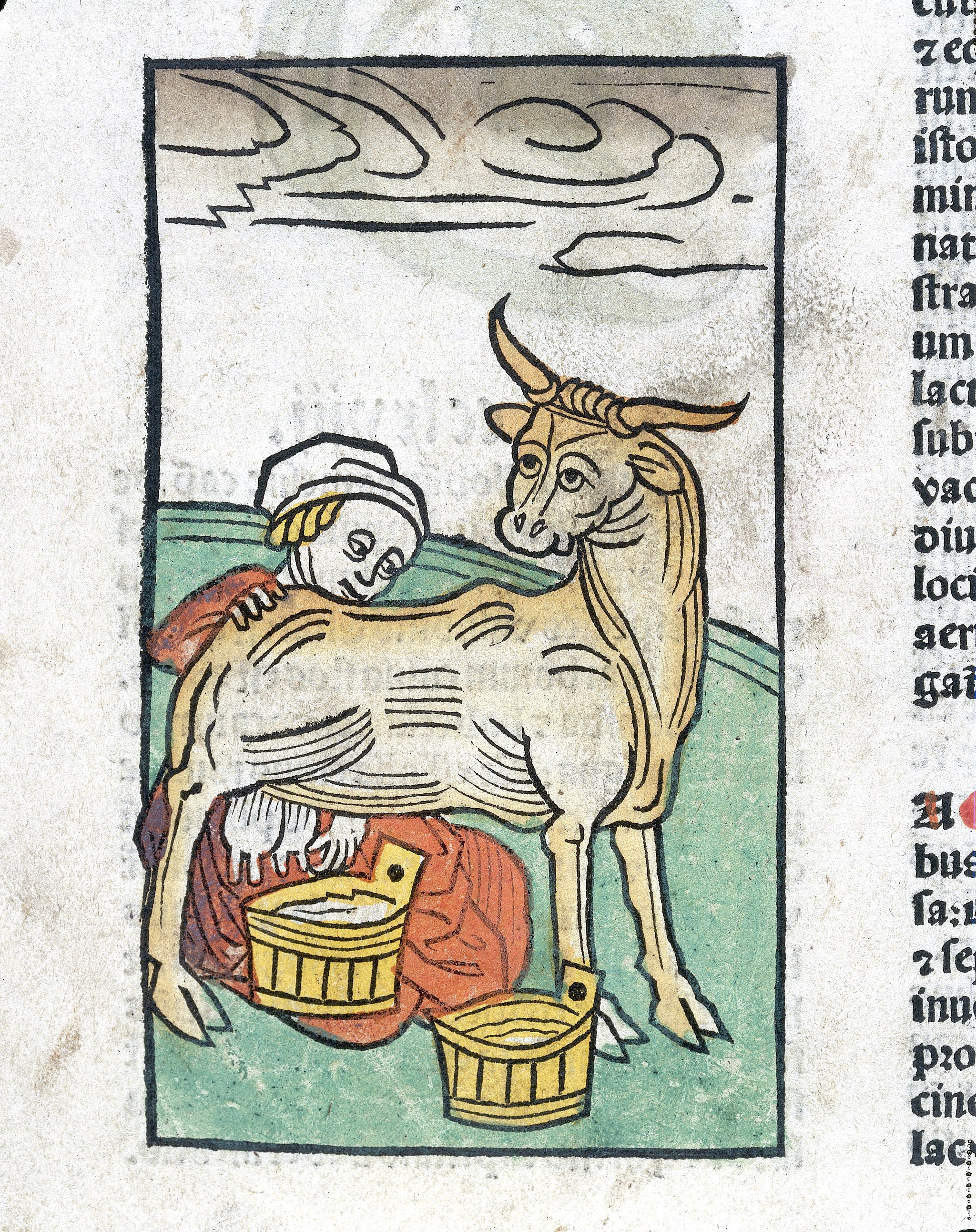 A woman milking a cow, woodcut, 1547 Wellcome L0029211