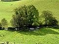 Afon Cerdin near Fforest Cerdin, Llandysul - geograph.org.uk - 997973.jpg