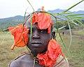 African Tulip Boy, Tulgit (14539438044).jpg