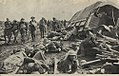 After the battle on the Menin Road, Belgium 1917 (36232401766).jpg