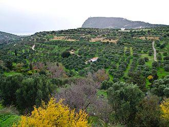 Hersonissos - Image: Agriana Village