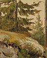 Albert Edelfelt - Metsännyppylä, luonnos - A III 2005-2 - Finnish National Gallery.jpg