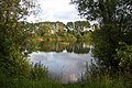 Alderson Lake, Needham Market - geograph.org.uk - 850270.jpg
