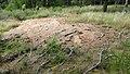 Allanaquoich Farm (Mar Lodge Estate) (16JUL17) (23).jpg