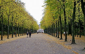 District 1, Düsseldorf - Hofgarten during autumn of 2006