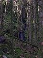 Allt an Torra, Carradale, Kintyre. - geograph.org.uk - 69054.jpg