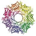 AlphaHemolysin membrane heptamer 7AHL VwDownPore.jpg