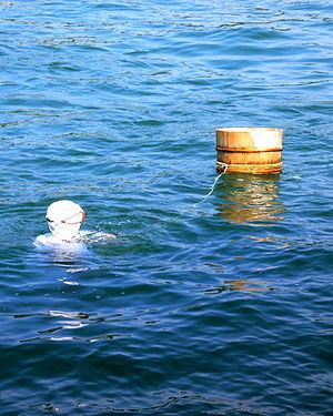 Mikimoto Pearl Island - One scene of an ama diver's show