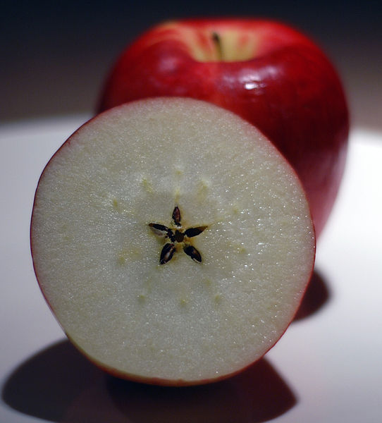 red apple malus