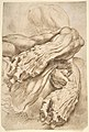 Anatomical Studies- a left forearm in two positions and a right forearm MET DP802241.jpg