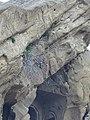 Ansichten von Dawit Garedscha 14.jpg