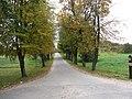 Antazavė, Lithuania - panoramio (14).jpg