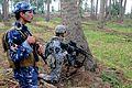 Apache Blanket covers Iraqi palm groves DVIDS273002.jpg