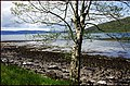 Applecross Bay. - panoramio (1).jpg