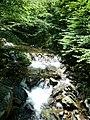 Apriltzi, Bulgaria - panoramio (16).jpg