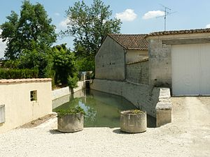 Anais, Charente - The Argence at Churet