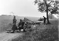 Artillerie Strasse bei Zihlwil - CH-BAR - 3236393.tif