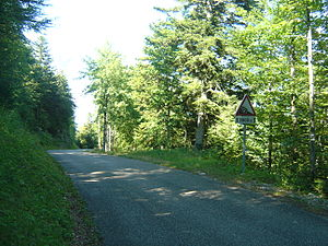 Anglefort - A steep stretch on the D120 through the Col du Grand Colombier.