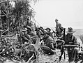 Australian infantry Danmap River 1945 (AWM 078054).jpg
