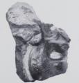 Austrosaurus holotype vertebra.png