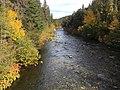 Autumn scene near Sacramento River (23994348947).jpg