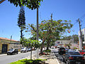 Avenida Rui Barbosa, Heliópolis - Garanhuns - Pernambuco - Brasil(3).jpg
