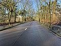 Avenue Fontenay Paris 3.jpg
