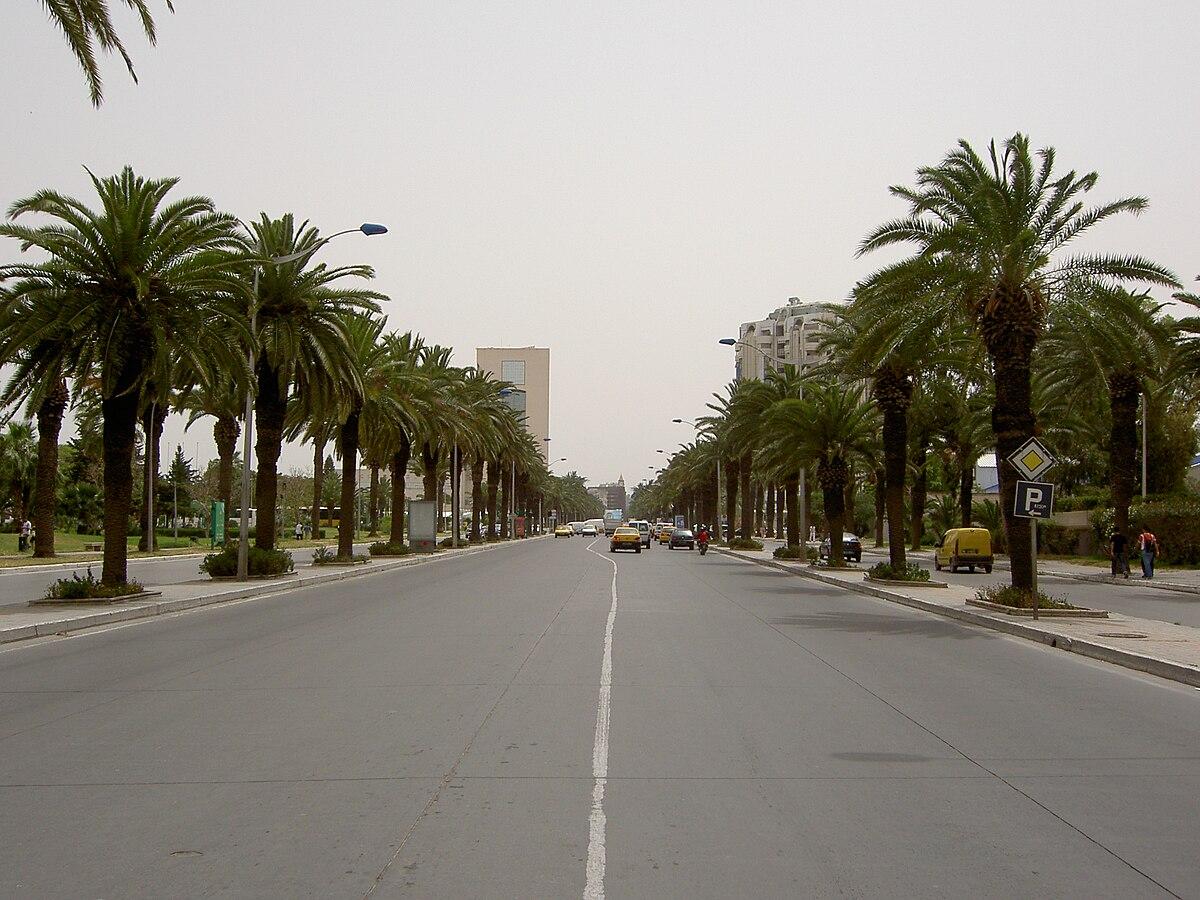 ع شارع محمد الخامس (مدينة تونس) - ويكيبيديا، الموسوعة الحرة