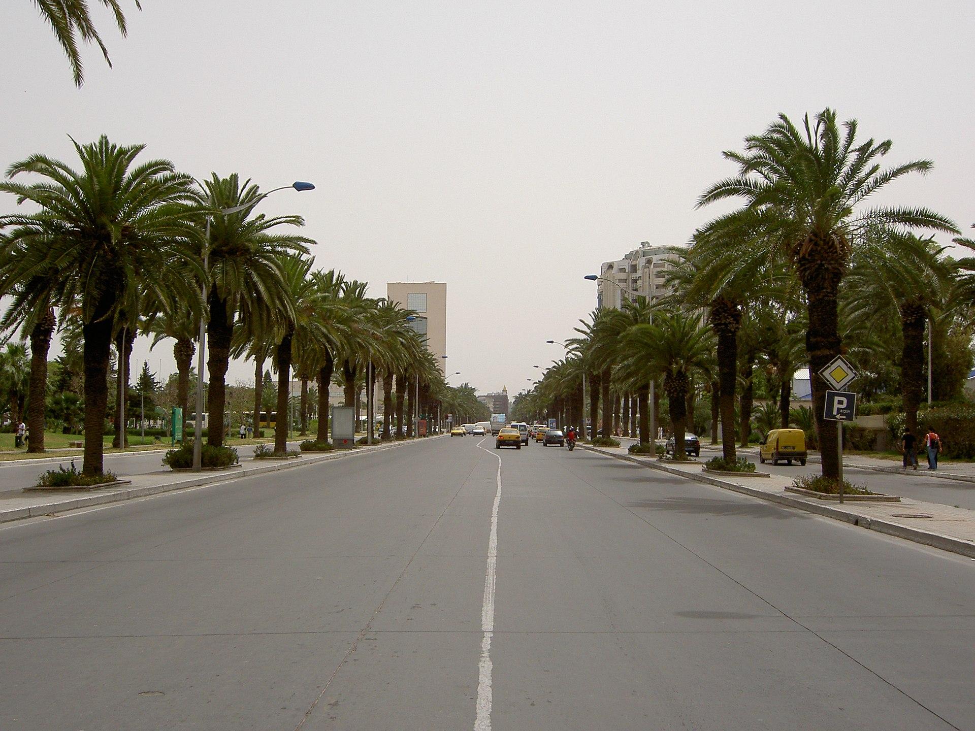 for Salon 9 places tunisie