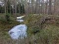 Bärenlöcher im März 1 - panoramio.jpg