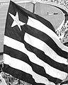 Bandeira Botafogo FR.jpg