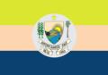 Bandeira de Antônio de Almeida.png