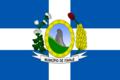 Bandeira de Itapaje 2013 Cesario Pinto.png