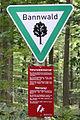Bannwald rockenberg4.jpg
