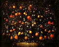 Bartolomeo Bimbi citrus fruits.jpg