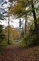 Basildon Park (6320470102).jpg