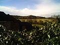 Belvoir Castle viewed from Woolsthorpe - geograph.org.uk - 280314.jpg