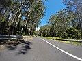 Benandarah NSW 2536, Australia - panoramio (5).jpg