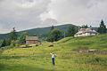 Berezhnytsya (8054264790).jpg