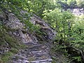 Bergell Saumweg 03.jpg