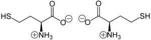 Homocysteine - Zwitterionic form of (S)-homocysteine (left) and (R)-homocysteine (right)