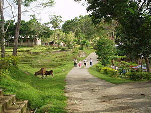 Guindulman, Bohol - Image: Biabas Guindulman