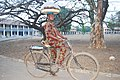 Bicycle Hawking.jpg