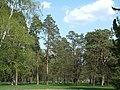 Bila Tserkva, Kyivs'ka oblast, Ukraine - panoramio (69).jpg