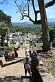 Biligiriranga Hills, B R Hills - during PHMSTBGP-2020 (13).jpg