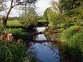 Biodiversitätsprojekt Schmuttertal, Natura2000, FFH Landschaftsschutzgebiet.jpg