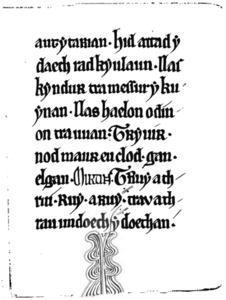 Black.Book.of.Carmarthen.facsimile.png
