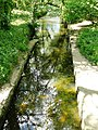 Black Brook Loughborough in Bailey's Plantation - geograph.org.uk - 1338293.jpg
