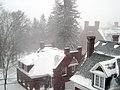 Blanketed Roofs (407991706).jpg